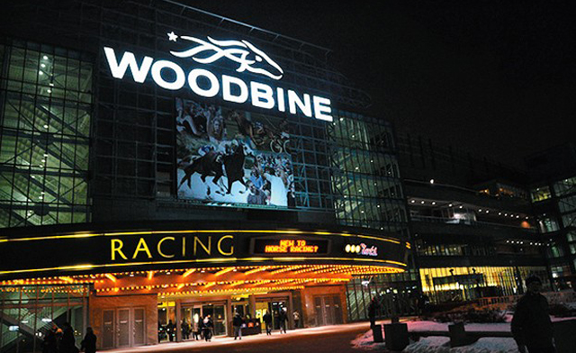 single in the city night at the races at woodbine racetrack